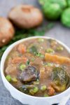 Mushroom Stew is the perfect vegan substitute for beef stew. Hearty, rich, and full of flavor. I promise you won't miss the meat! #vegan #mushrooms #mushroomstew #vegetablestew